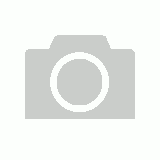 MORGAN MEDIUM DENSITY FOAM ROUND SHIELD